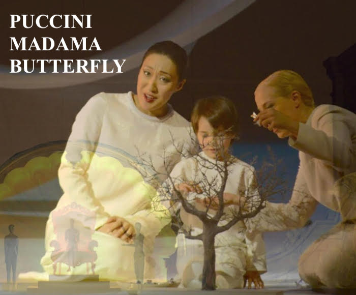 MADAMA BUTTERFLY (April 24th, 2018)