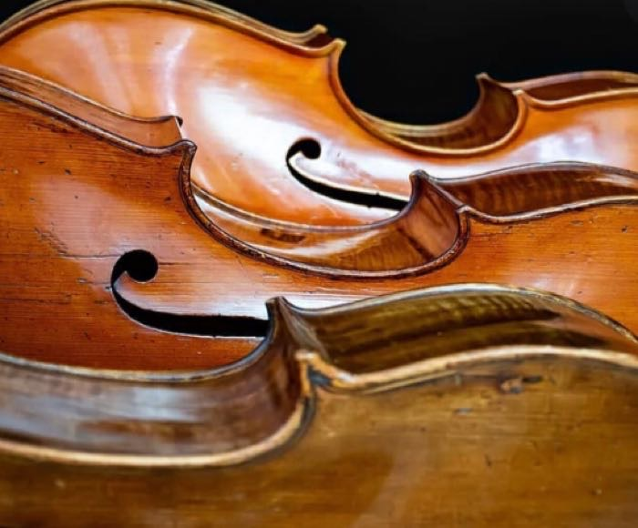VMP shares with you some quite unusual musical pieces,  for solo violin and ensemble. Andrea Ferroni, Violin solo - Venice Music Project Ensemble