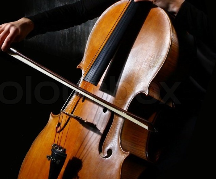 Venice Music Project  is happy to feature the sweet sounds of the baroque cello in music by the great Venetian masters. Gioele Gusberti, Cello - Liesl Odenweller, Soprano - Venice Music Project Ensemble